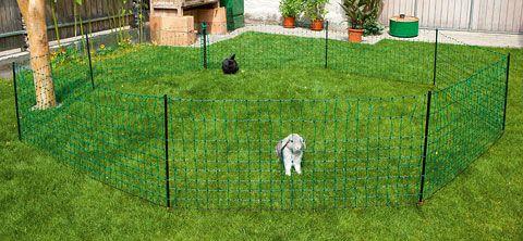 Avantajele plasei de gard electric pentru pasari si iepuri