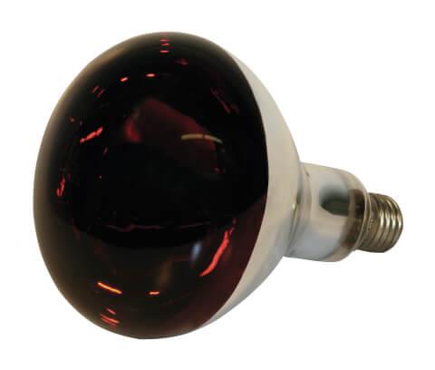 Lampa si Bec Infrarosu Purcei