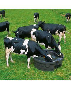 adapatoare pasune pentru vaci, cai
