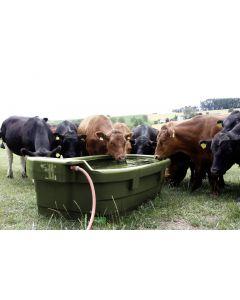 adapator pasune vaci