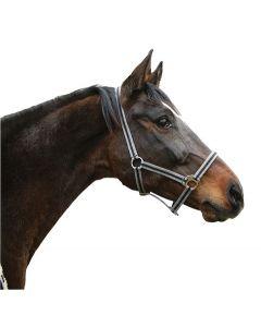 Capastru pentru cai