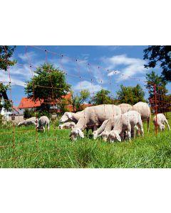Plasa pentru gard electric Ovinet pentru oi sau capre